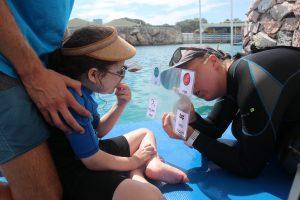 Dolfijn therapie Curacao Coco